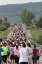 249_marathon_start_runners
